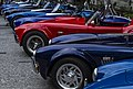 Cobra's for Firebird presentation-1 (19201099731).jpg