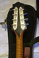 Collings MT2-O mandolin tuners & neck.jpg