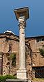 Column temple Romulus Forum Romanum, Rome, Italy.jpg