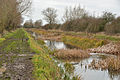 Coombe Hill Canal and Meadows 1.jpg