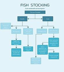 Fish stocking - Wikipedia