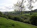 Cothi Valley - geograph.org.uk - 1244288.jpg