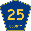 County 25.png