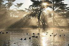 Crepuscular rays from Stow Lake in Golden Gate Park