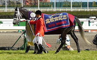 Curren Chan Japanese-bred Thoroughbred racehorse