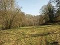 Dart valley - geograph.org.uk - 2319062.jpg