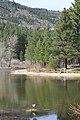 Davis Creek Park - panoramio (18).jpg
