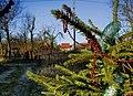 December 31, 2011. -7 Celsius - panoramio.jpg