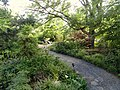 Denver Botanic Gardens - DSC01081.JPG