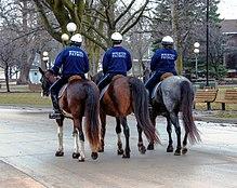 Des Moines Police Department (Iowa) - Wikipedia