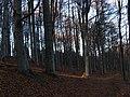 Diósjenő, 2643 Hungary - panoramio (14).jpg
