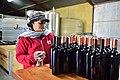 Die Mas vineyard, Wine Route, Upington, Northern Cape, South Africa (20352291419).jpg