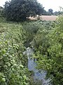 Dilham Canal, from Honing Bridge - geograph.org.uk - 34206.jpg