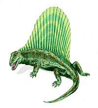 Dimetrodon BW.jpg