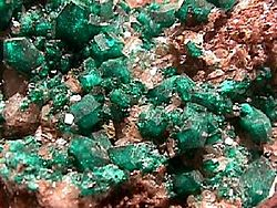 Image illustrative de l'article Dioptase