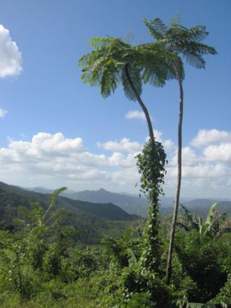 A view to the west from the foot of El Yunque, near Baracoa, Cuba
