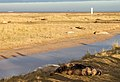 Donna Nook IMG 8775 - panoramio.jpg