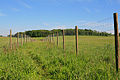 Double-fenced footpath between Dean Farm and Riversdown House - geograph.org.uk - 442375.jpg