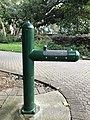 Drinking fountains at City Botanic Gardens, Brisbane.jpg
