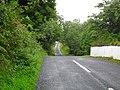 Drumgooland Road, Farranfad, Seaforde - geograph.org.uk - 1476483.jpg