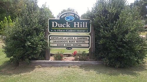 Duck Hill chiropractor