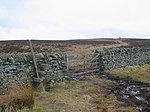 Dyke, Twin Law. Southern Upland Way stile and gate just east of the summit.