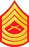E8a USMC MSGT.jpg