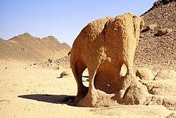 Elephnat Illizi Algeria.jpg