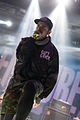 Emmure With Full Force 2014 02.jpg