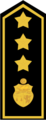 Epaulettes de la Protection Civile - Tunisie 02.png