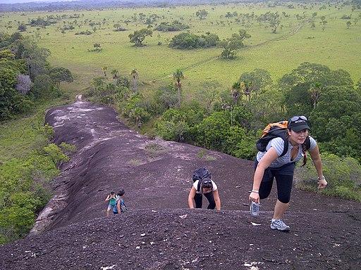 Escalada en el Monumento Piedra de la Tortuga. Amazonas-Venezuela.