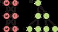 Evolsex-dia1a.png