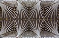 Exeter Cathedral nave vaulted ceiling.jpg
