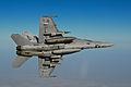 F-18 leans left.JPG