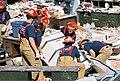 FEMA - 5165 - Photograph by Jocelyn Augustino taken on 09-25-2001 in Maryland.jpg