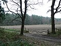 Farmland amid the forest - geograph.org.uk - 371755.jpg
