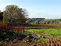 Farmland near Woolley Home Farm - geograph.org.uk - 71323.jpg