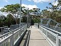 Faulconbridge Station Footbridge.JPG