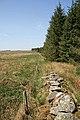 Field-woodland boundary - geograph.org.uk - 799516.jpg