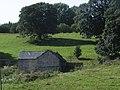 Field barn below Llyn Rhuddwyn - geograph.org.uk - 559791.jpg