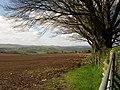 Field beside Pepperdon Down - geograph.org.uk - 1290967.jpg
