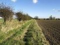 Field side path - geograph.org.uk - 588304.jpg