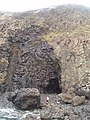 First Foot, Fossil Tree - geograph.org.uk - 654691.jpg
