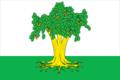Flag of Kaibitsky rayon (Tatarstan).png