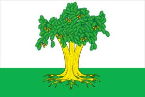 Kaybitsky District - Image: Flag of Kaibitsky rayon (Tatarstan)
