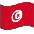 Flag of Tunisia2.png