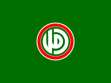Flag of the Amal Movement.svg