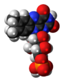 Flavin mononucleotide 3D spacefill.png