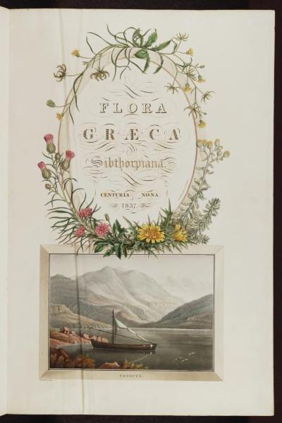 File:Flora Graeca, Volume 9.djvu
