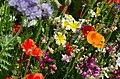 Flowers (9234700156).jpg